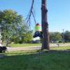 ワイヤーアクション?木の伐採をしていた作業員を襲った悲劇!