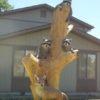 まるで本物!チェーンソーで削った木の彫刻の完成度がヤバい!!
