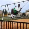 少年がブランコのスゴ技に挑戦!ジャンプして目の前の柵を飛び越える予定が・・・。